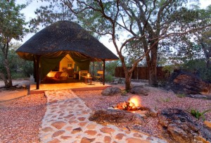 bushman's hide safari tent